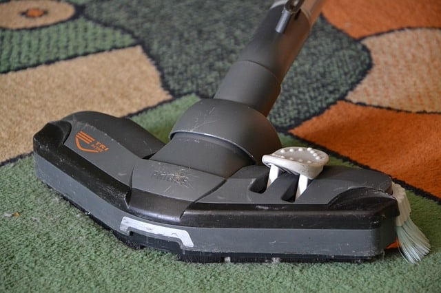 Carpet Cleaner: Types, Pros, And Cons