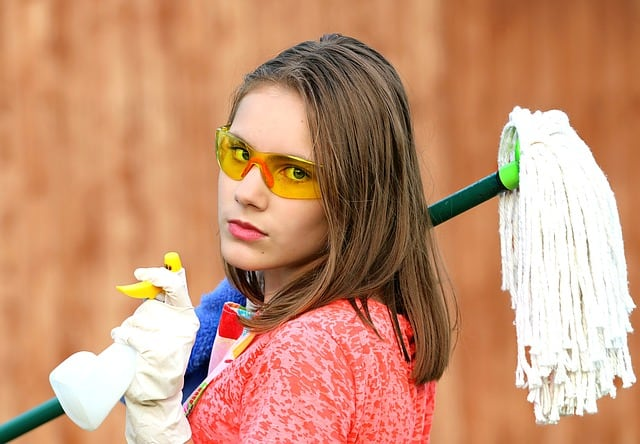 Clean Your House: Importance And Other Services